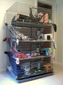 Choosing Your Pet Rats Home About Pet Rats