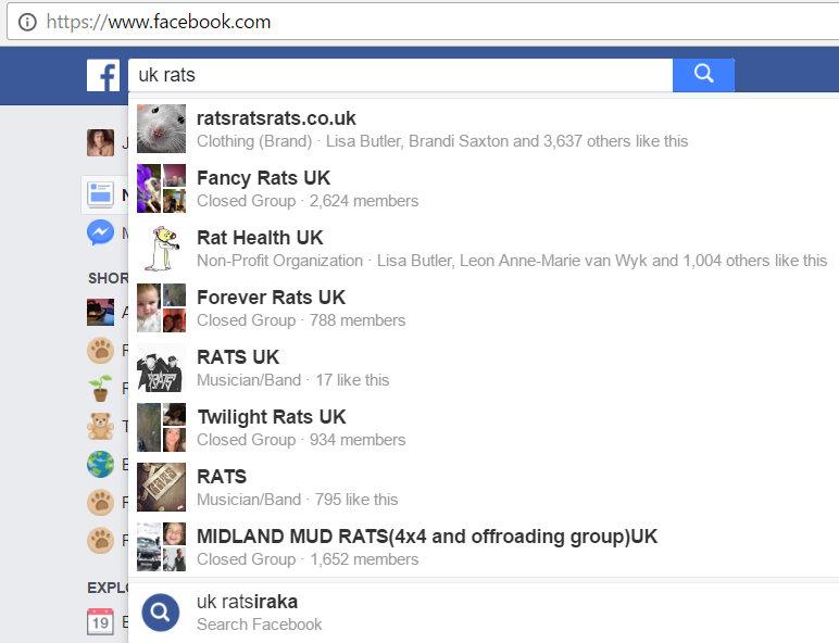 U.K. Pet Rat Facebook Groups